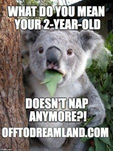 What do you mean your 2 year old doesn't nap?